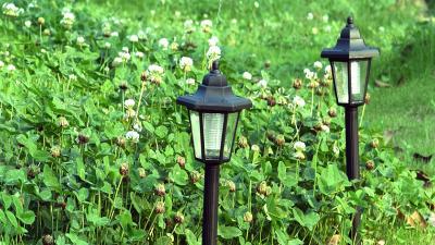 弘欣顺:天宇光电草坪灯led灯珠解决方案